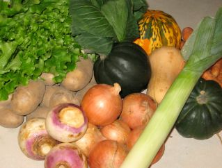 Winter CSA Week One