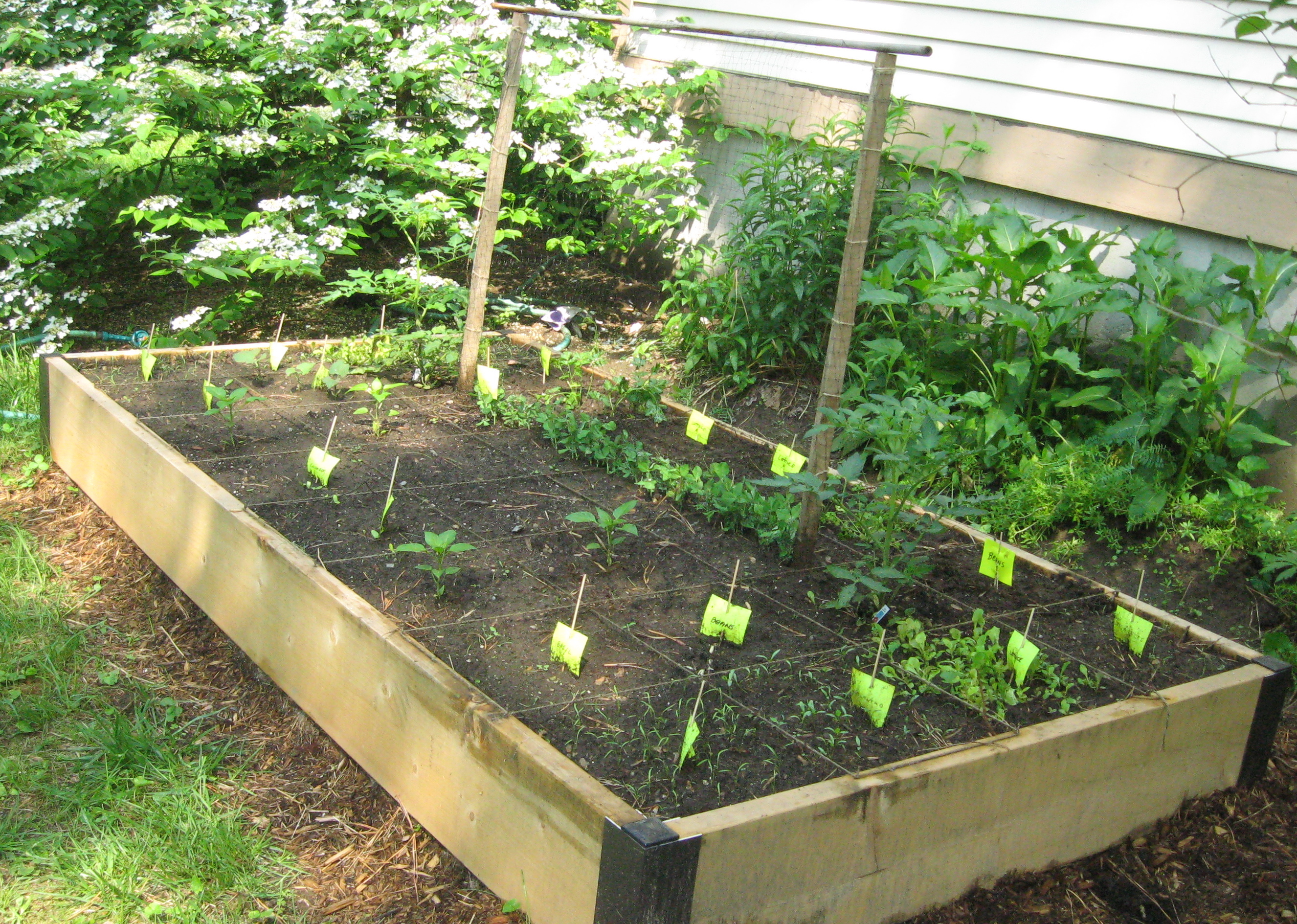 1000 images about vertical vegetable gardening on for Small garden bed ideas