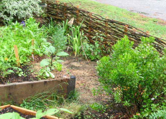Photo of Wattle Fence