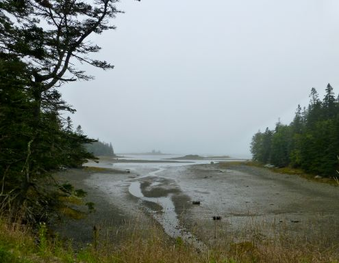 Cove at Deer Isle Northwest Harbor