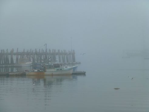 Fog at Stonington Harbor